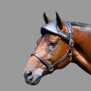 travel horse head bumper