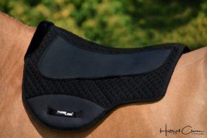 Treeless saddle pad